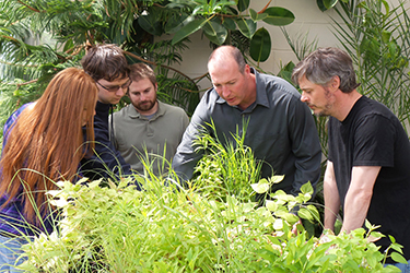 photo of students and professors in a greenhouse