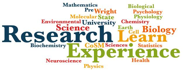 CoSM Undergraduate Research and Experiential Learning Logo