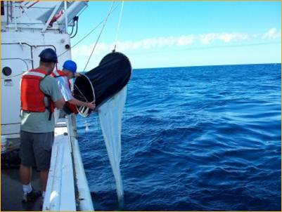 Picture of Hammerschmidt_researchers collecting seawater off Portugal.jpg