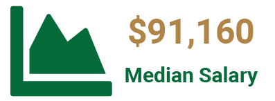 Median salary of a Statistician is $91,160