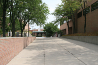 photo of allyn rike sidewalk
