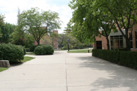 photo of the brehm laboratory sidewalk