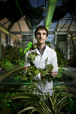 photo of a biology student in the greenhouse