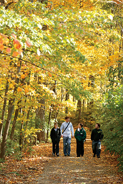 photo of students walking in the woods