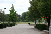 photo of the math and microbiological sciences building sidewalk