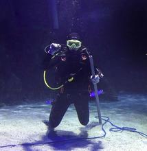 Biological Science student Megan Reed diving image